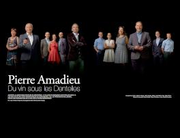 Terre de Vins Pierre Amadieu Saga