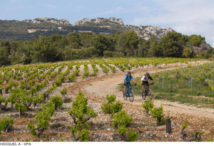 HOCQUEL A – Vaucluse Provence Attractivité– Vaucluse Provence Attractivité
