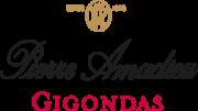 logo pierre amadieu